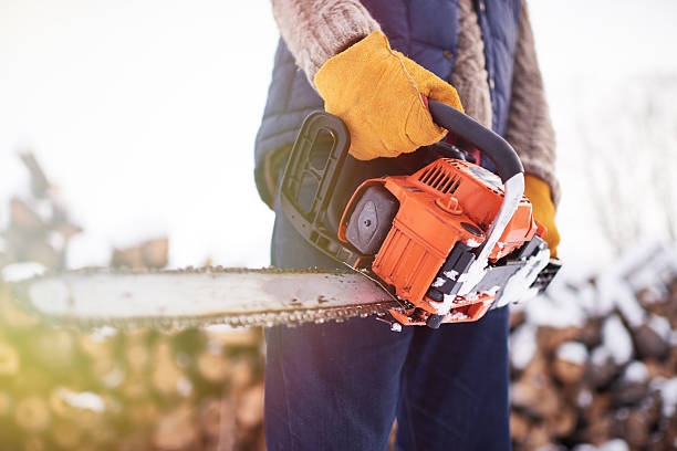 man with saw - chainsaw stock photos and pictures