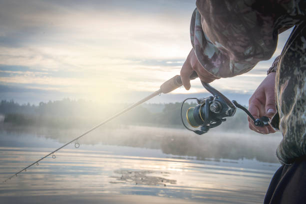 A man with spinning in the morning twilight on the river Bank. A man with spinning in the morning twilight on the river Bank. perch fish stock pictures, royalty-free photos & images