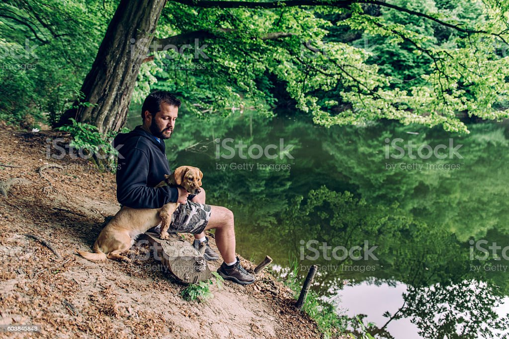 Man with the dog sitting on the bench stock photo
