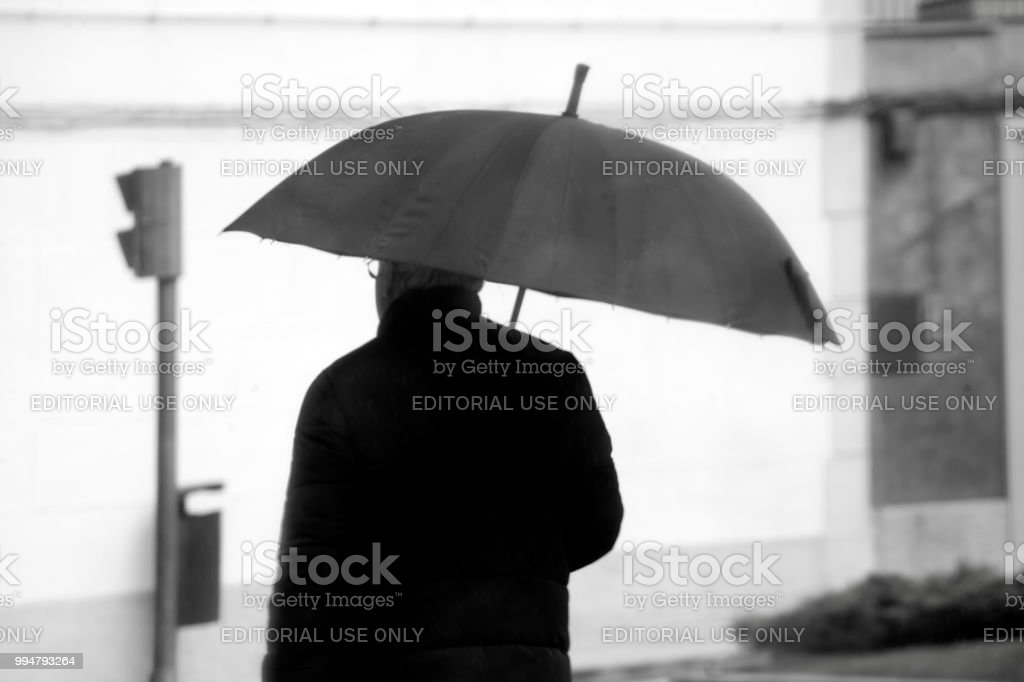 Rear black and white view of man with umbrella walking on the...