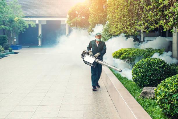 man work fogging to eliminate mosquito for preventing spread dengue fever and zika virus - attrezzatura per la disinfestazione foto e immagini stock