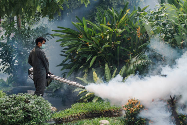 man work fogging to eliminate mosquito for preventing spread dengue fever and zika virus - virus zika foto e immagini stock