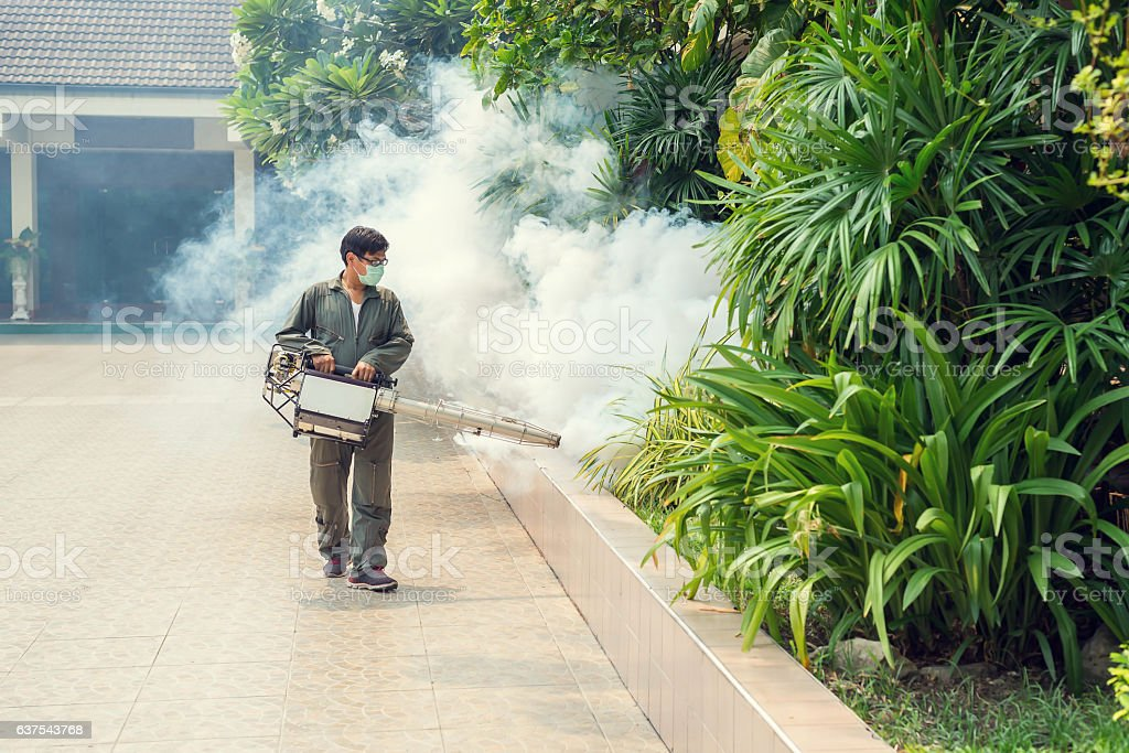 Man work fogging to eliminate mosquito stock photo