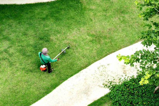 man worker cutting  grass with lawn mower stock photo