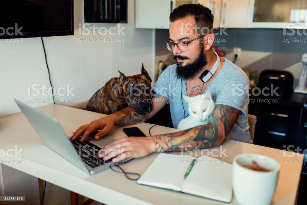 Man working at home with his dog and cat next to him stock photo