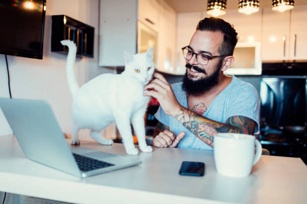 Man working at home with white cat next to him picture id815761976?b=1&k=6&m=815761976&s=612x612&w=0&h=akfwobzcnssdfwqfncuggkzkwq2hxoicnmrrpedkviw=