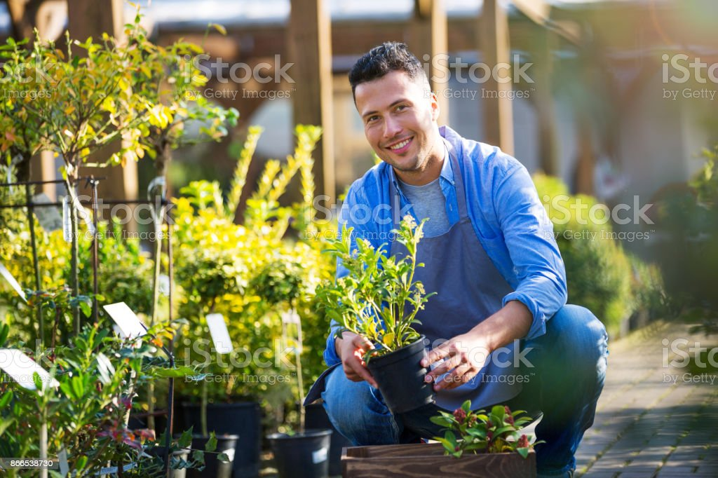 Man working in garden center stock photo