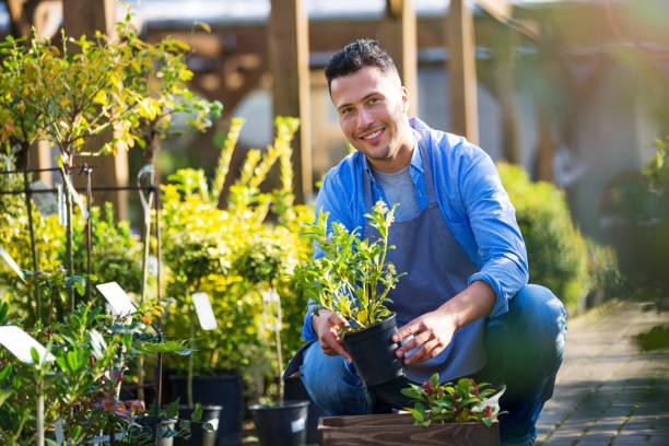 hombre trabajando en un centro de jardinería - jardinería fotografías e imágenes de stock