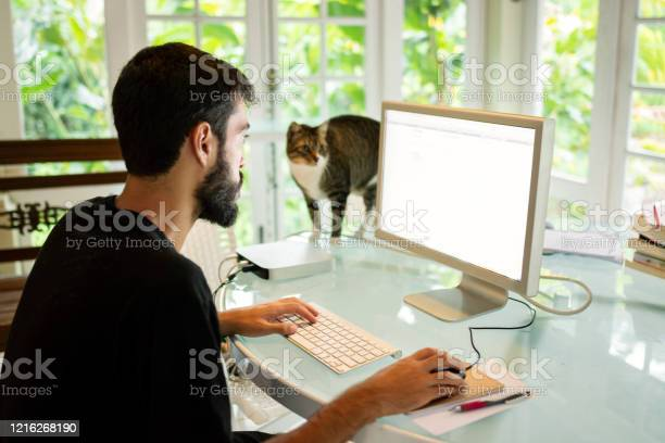 Man working in his home office using computer in the desk with a cat picture id1216268190?b=1&k=6&m=1216268190&s=612x612&h=tn x4oqo6uz2qi0nfh6recod8zpic1xecvd7ejwgak4=