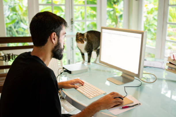 Man working in his home office using computer in the desk with a cat picture id1216268190?b=1&k=6&m=1216268190&s=612x612&w=0&h=okt50ddwxh8 v9aqgltmtltfa3pjalihi5jpjscun3o=
