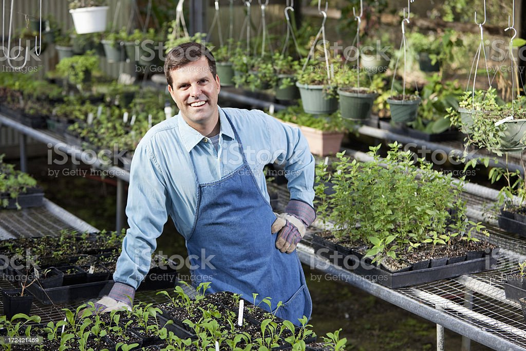 Man working in plant nursery royalty-free stock photo