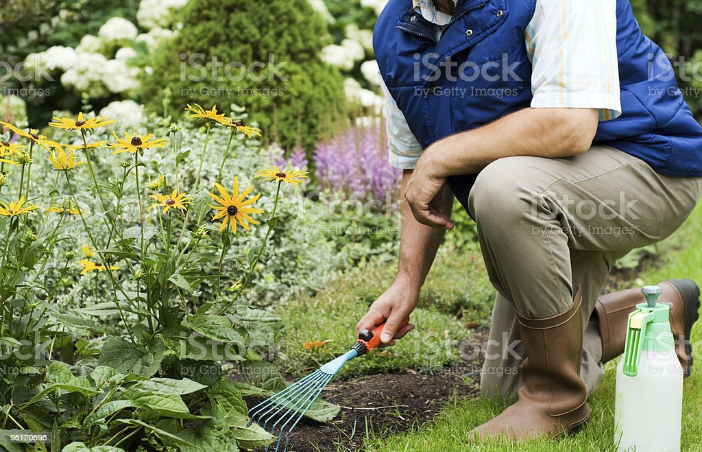 Man working in the garden royalty-free stock photo