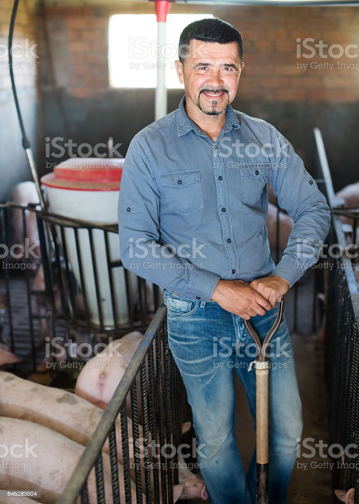 Man working on animal farm stock photo