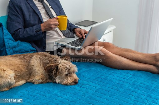 Man working looking at his computer on his bed from home with dress suit and boxer shorts next to his dog