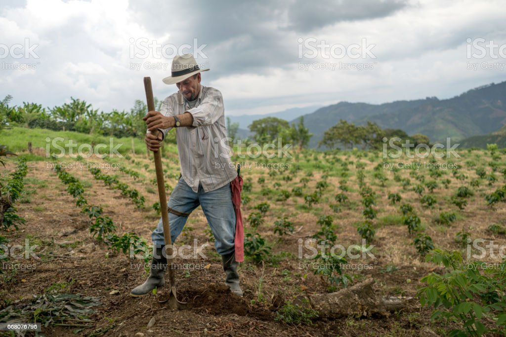 Man working the land at a farm – agriculture concepts stock photo