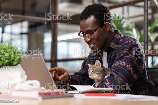 Man working together with his grey cat picture id1134074078?b=1&k=6&m=1134074078&s=612x612&h=tpqkd5wmn35jsad6hxczk3d3knzrzapuau81coff ze=