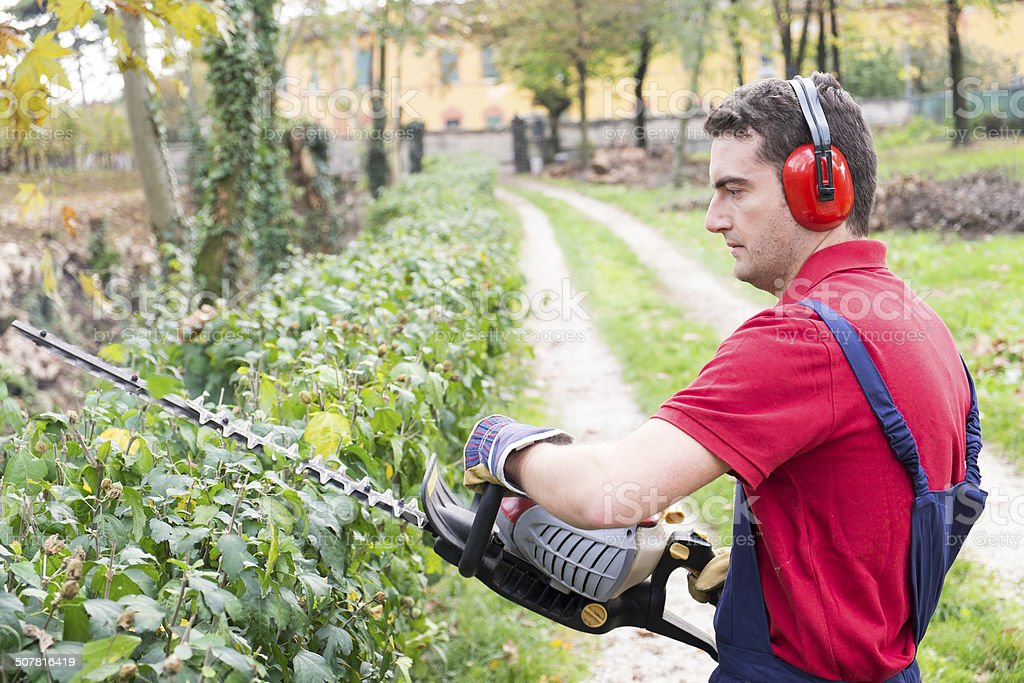 Man working with hedge trimmer royalty-free stock photo