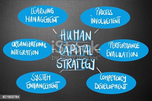 Management - Human Capital Strategy