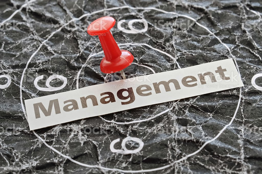 Management in business foto stock royalty-free
