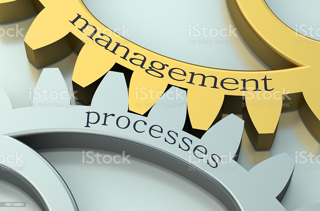 Management Processes concept on the gearwheels stock photo