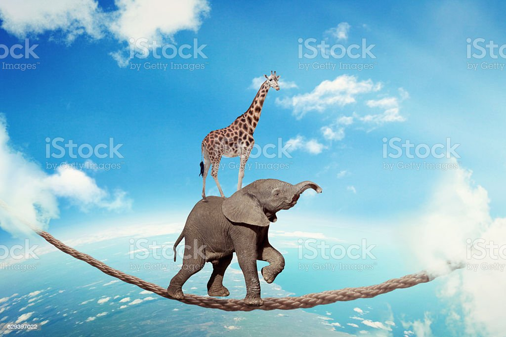 Managing risk business challenges uncertainty concept stock photo