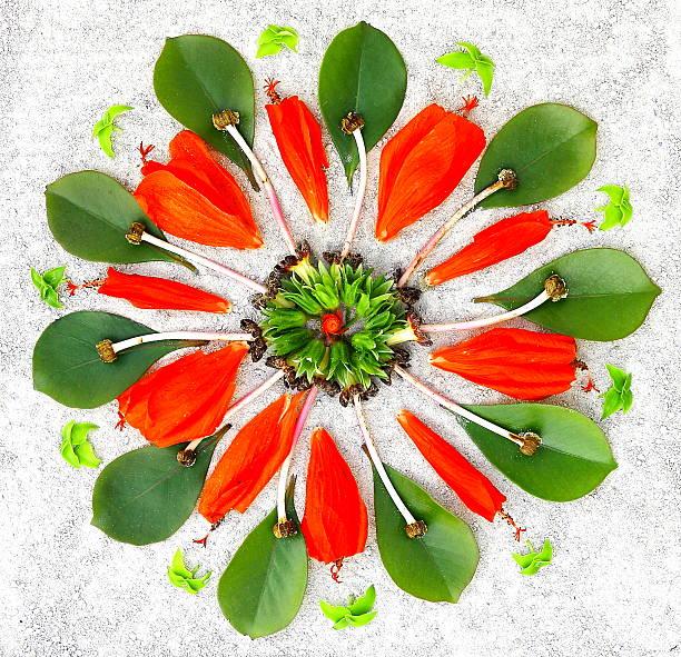 Mandala with natural elements picture id494424418?b=1&k=6&m=494424418&s=612x612&w=0&h=r0ts3b9clrc0qlimgra5hcg23pv gioxiqbdy5drvze=