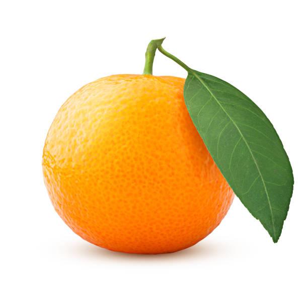mandarijn geïsoleerd op een witte achtergrond, uitknippad, volledige diepte van het veld - clipping path stockfoto's en -beelden