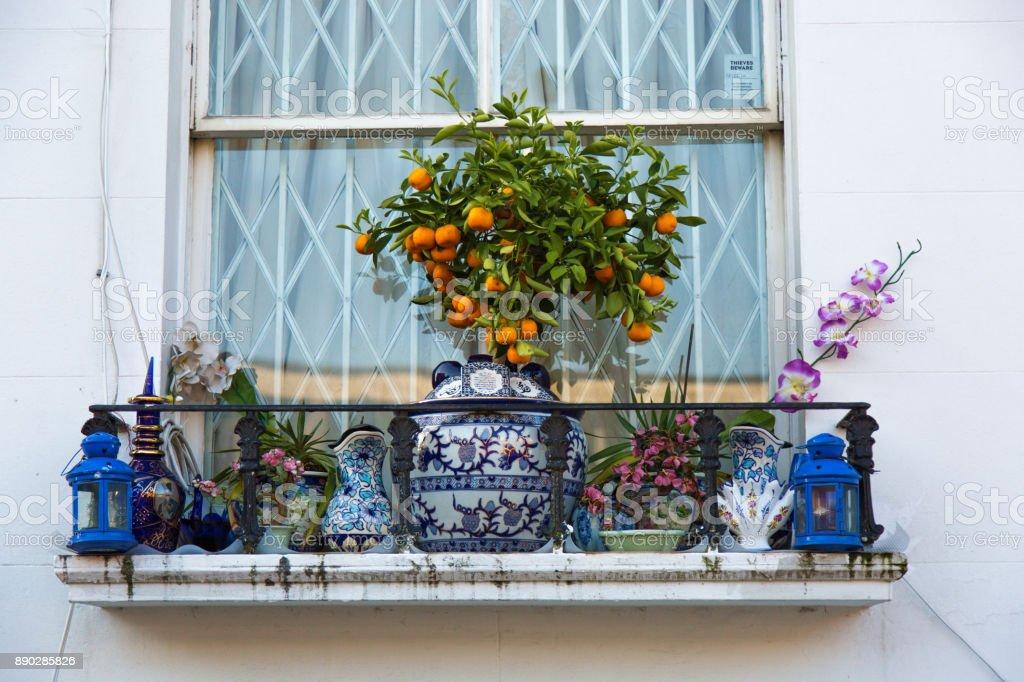 Mandarin tree on the window outdoor stock photo