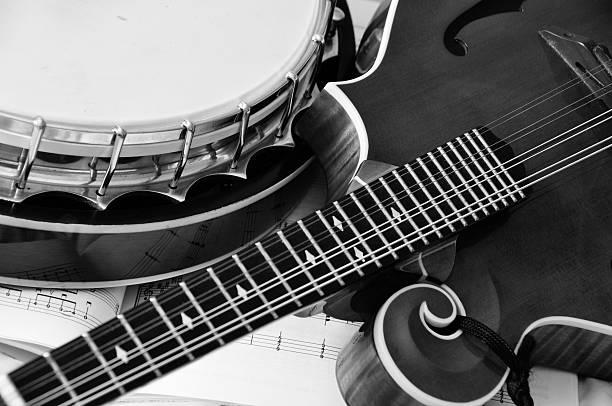 Mandolin and Banjo stock photo