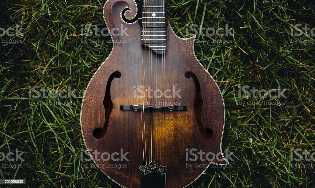Mandolin on Grass stock photo