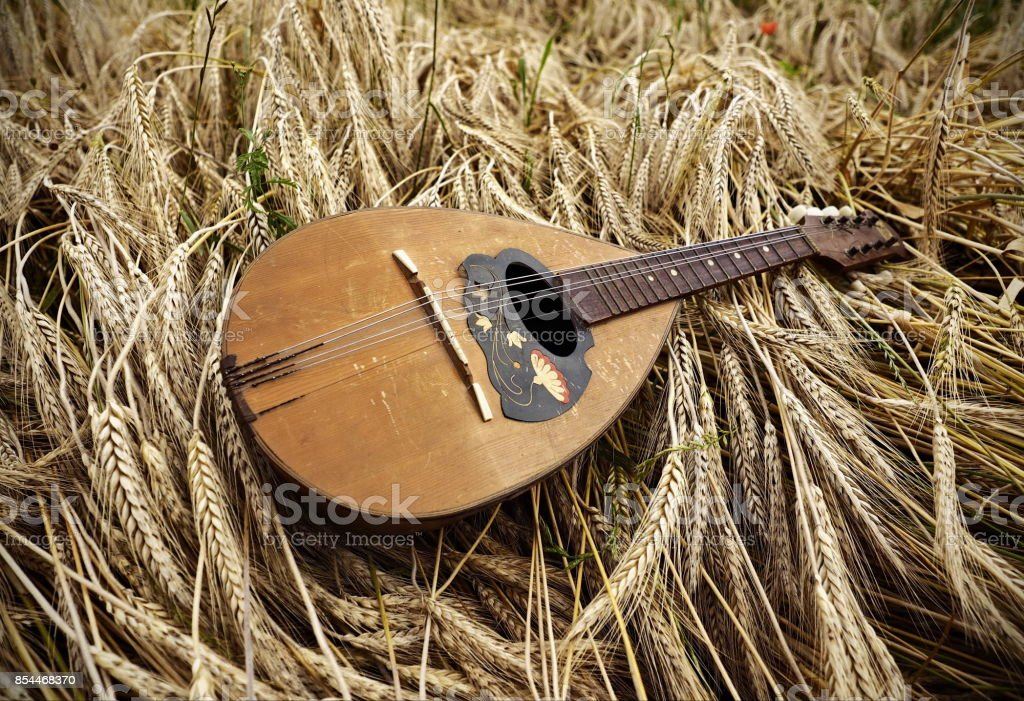 Mandolin on wheat stock photo
