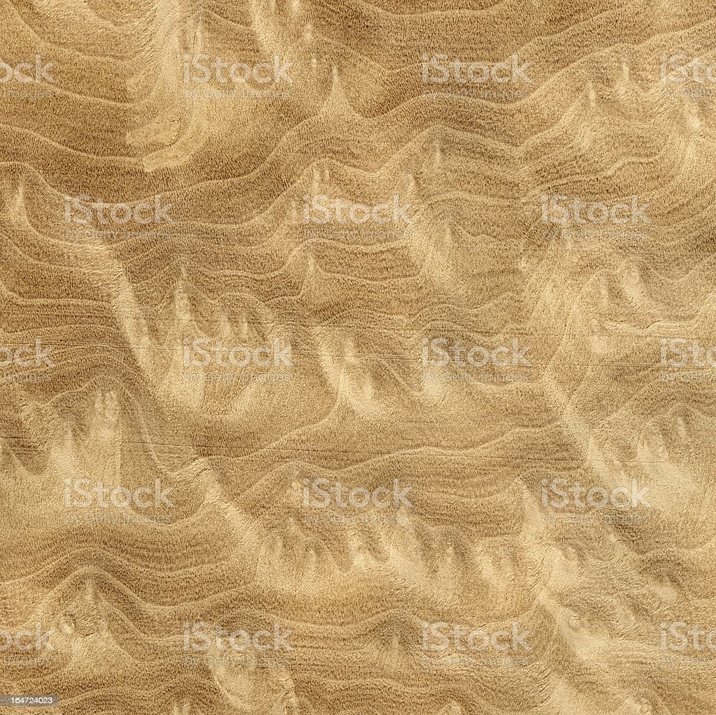 Mandragora Wood background royalty-free stock photo