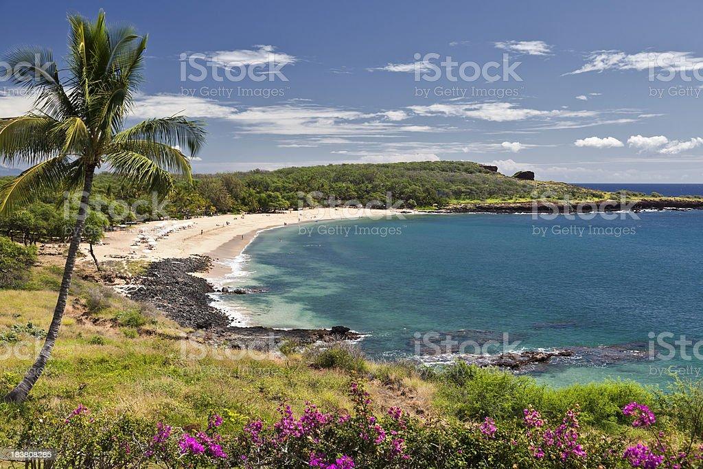 Manele Bay Hawaii stock photo
