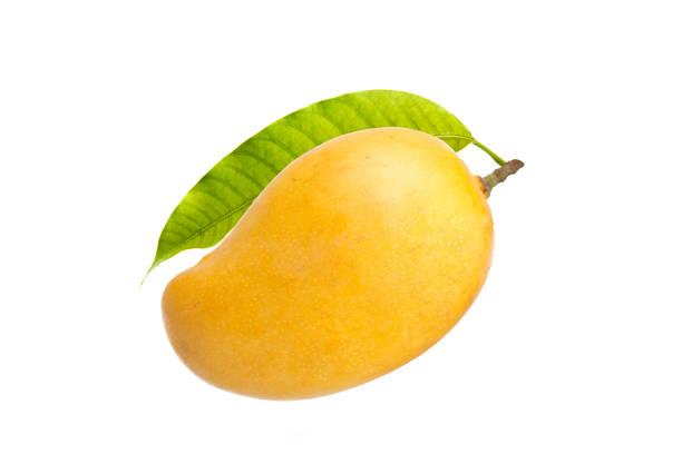 Mango and leaf isolated white background stock photo