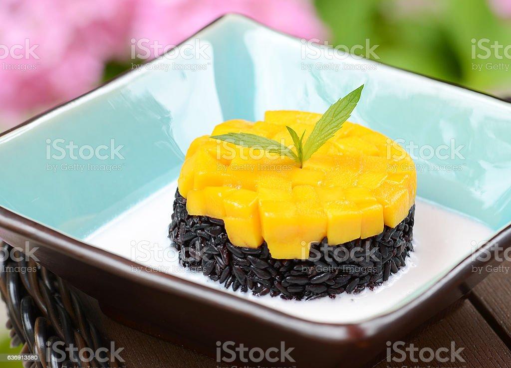 Mango & Coconut Sticky Rice Pudding stock photo