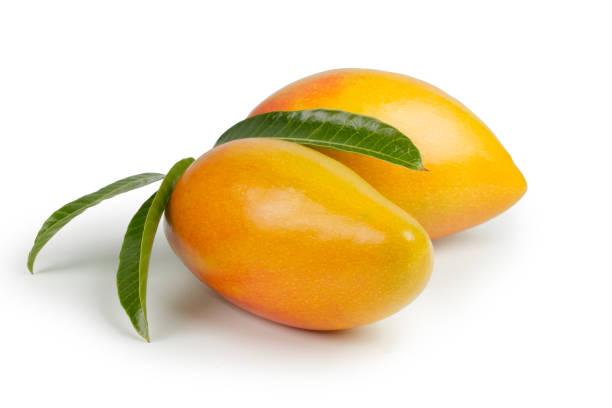 Mango fruit with leaf isolated white background stock photo