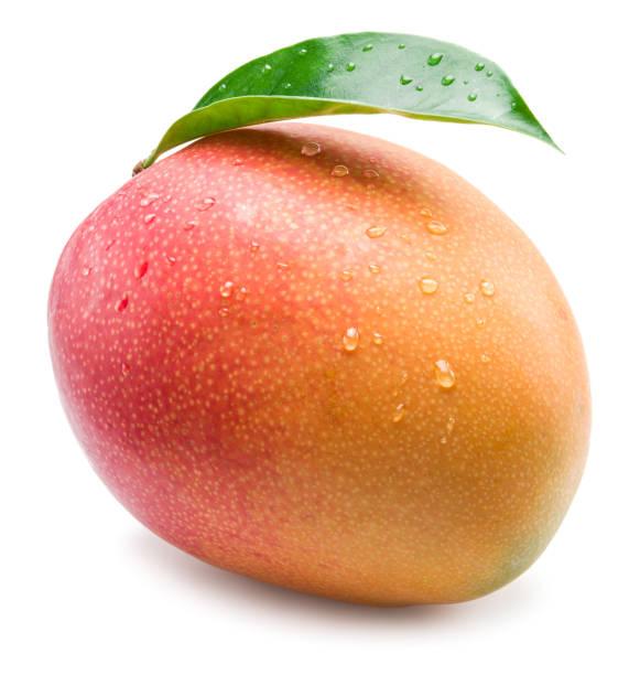 fruta de mango con gotas de agua. aislado sobre fondo blanco. - mango fotografías e imágenes de stock