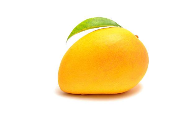 mango sobre un fondo blanco - mango fotografías e imágenes de stock