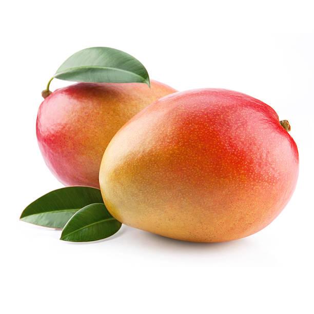 mango  - frutto tropicale foto e immagini stock
