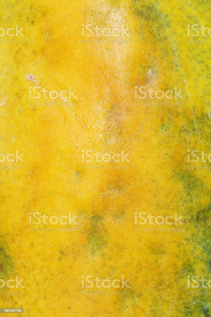Mango Skin royalty-free stock photo