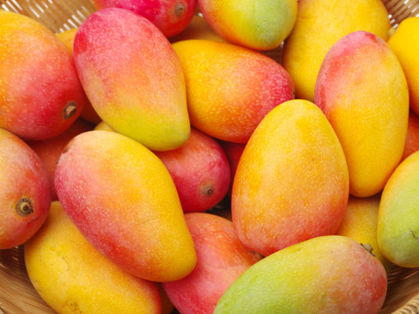 Mangoes composition   background Mangoes composition   background mango stock pictures, royalty-free photos & images