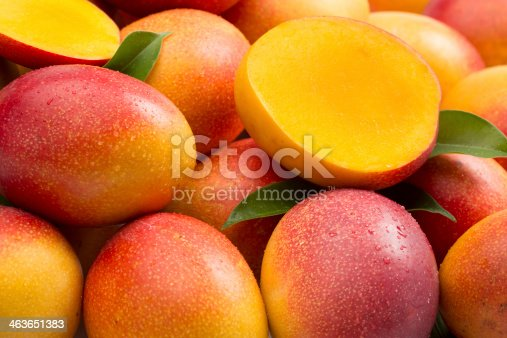 A lot of mangoes on white background