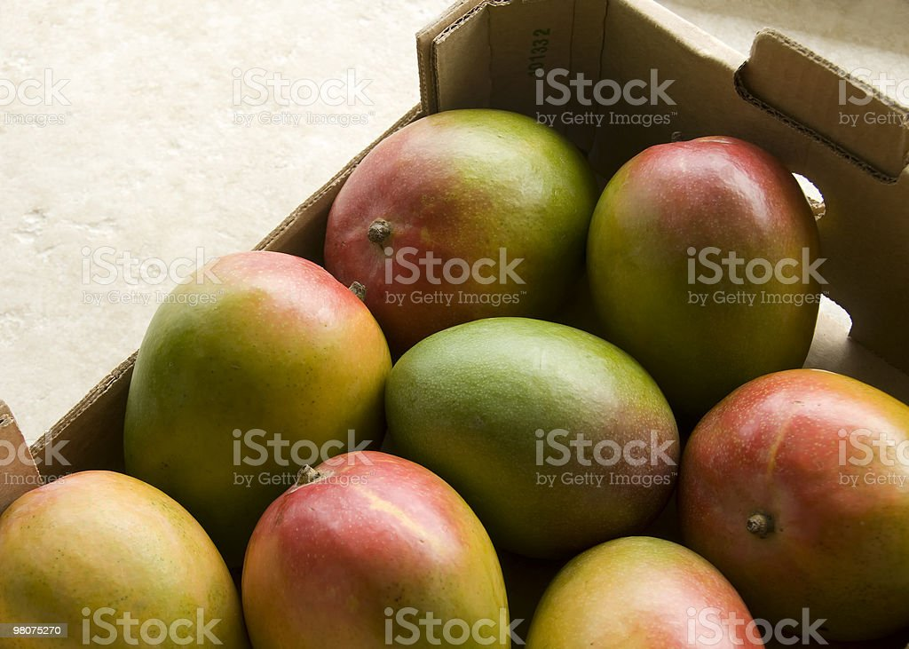 Mangoes in a box royalty-free stock photo
