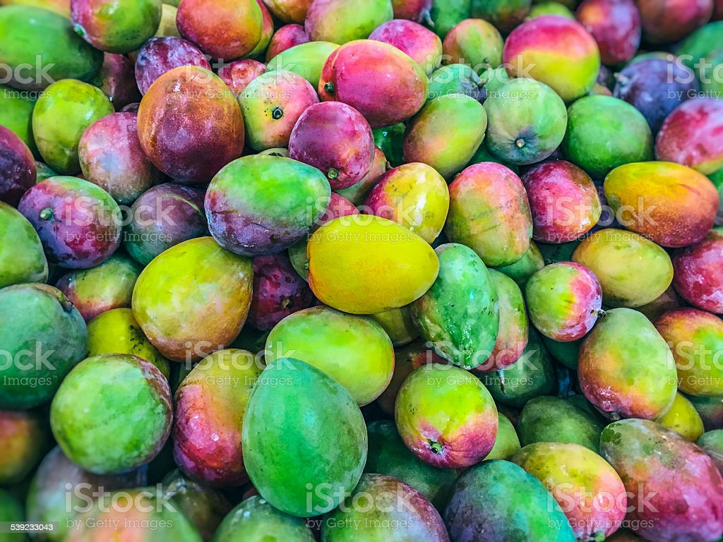 Mangoes on sale in the grocery store. royalty-free stock photo