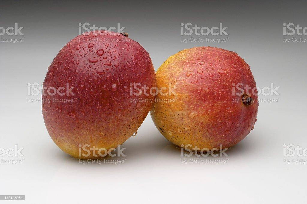 mangos-01 royalty-free stock photo