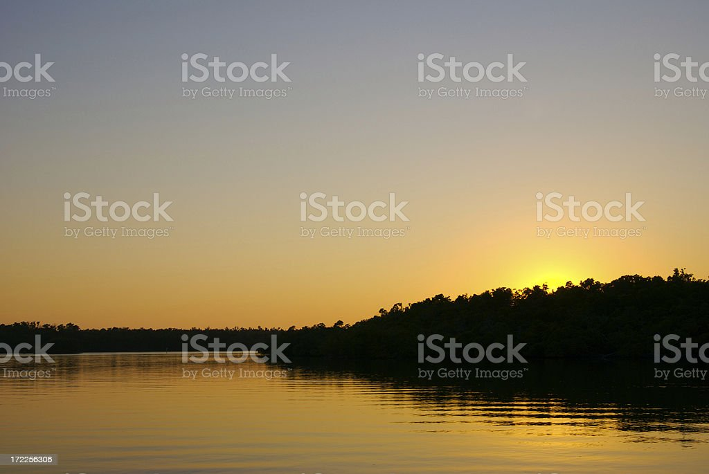 Mangrove Channel stock photo
