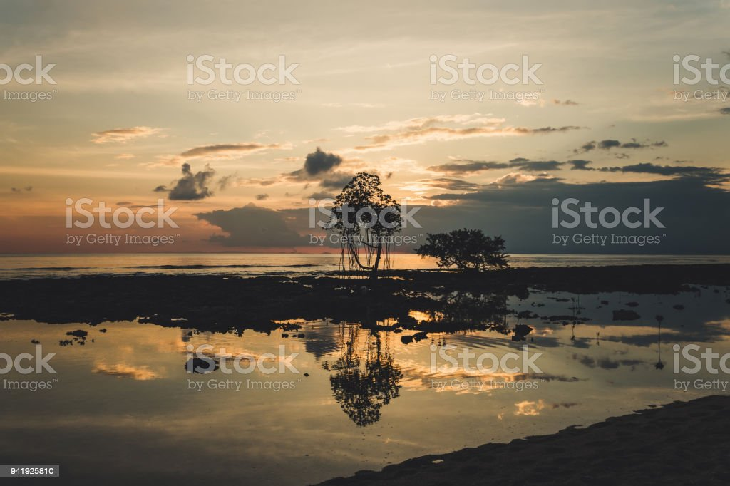 Mangrove Sunset, Taken at Neil Island, Andaman Islands, India. stock photo