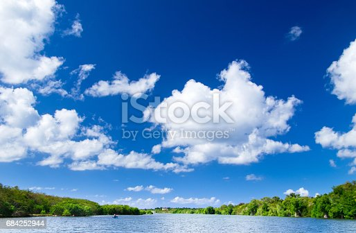 Mangrove Trees Stock Photo & More Pictures of Adventure