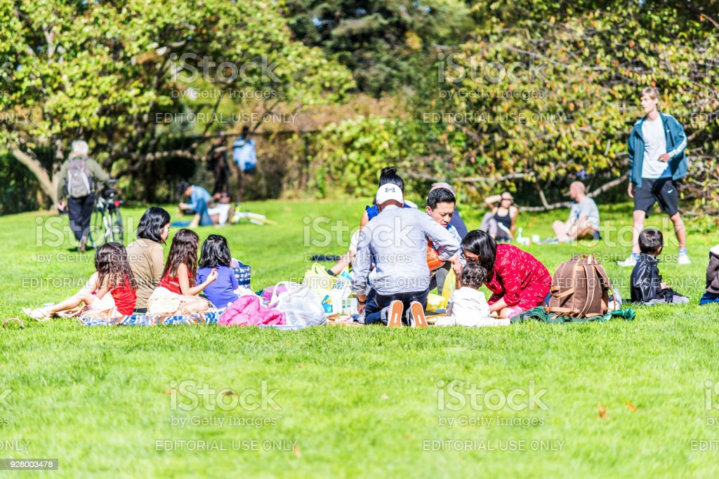 Manhattan NYC Central park with large Indian asian family sitting having picnic on blankets, great lawn grass meadow in autumn fall summer eating stock photo