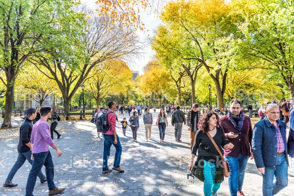 Manhattan NYC Central park with people walking on street alley, benches in autumn fall season with yellow vibrant saturated foliage trees, sitting on benches stock photo